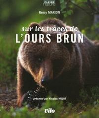 Rémy Marion - Sur les traces de l'ours brun.
