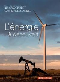 Rémy Mosseri et Catherine Jeandel - L'énergie à découvert.