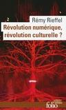 Rémy Rieffel - Révolution numérique, révolution culturelle ?.
