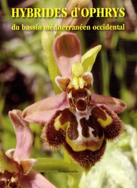 Rémy Souche - Hybrides d'ophrys du bassin méditerranéen occidental.