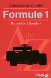 Renaud de Laborderie - Formule 1.