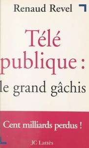 Renaud Revel - Télé publique : le grand gâchis.