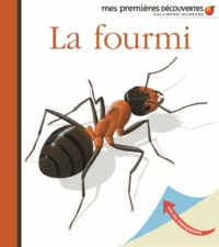 René Mettler - La fourmi.