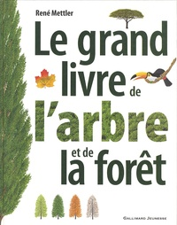 René Mettler - Le grand livre de l'arbre et de la forêt.