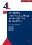 René Robaye - Questions spéciales relatives à la réparation du dommage.