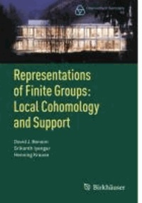 Representations of Finite Groups: Local Cohomology and Support.