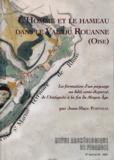 Jean-Marc Popineau - Revue Archéologique de Picardie N° Spécial 24, 2007 : L'homme et le hameau dans le Val du Rouanne (Oise) - La formation d'un paysage au bâti semi-dispersé, de l'Antiquité à la fin du Moyen Age.