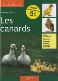 Reynald Nivoix - Les canards.