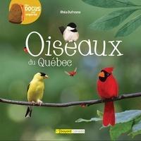 Rhéa Dufresne - Oiseaux du quebec.