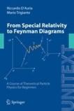 Riccardo D'Auria et Mario Trigiante - Relativity and Field Theory - Introduction to Special Relativity and to Classical and Quantum Field Theory.