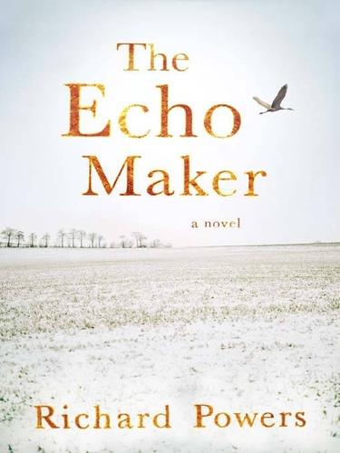 Richard Powers - The Echo Maker.