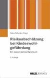 Risikoabschätzung bei Kindeswohlgefährdung - Ein systemisches Handbuch.