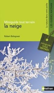 Robert Bolognesi - La neige.