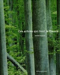 Histoiresdenlire.be Ces arbres qui font la France Image