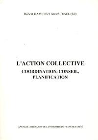 Robert Damien et André Tosel - L'action collective - Coordination, conseil, planification.