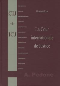 Robert Kolb - La Cour internationale de Justice.