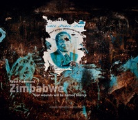 Robin Hammond - Zimbabwe - Your wounds will be named silence.