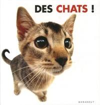 Rod Green - Des chats !.