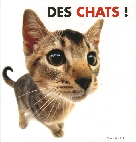 Rod Green - Des chats !.