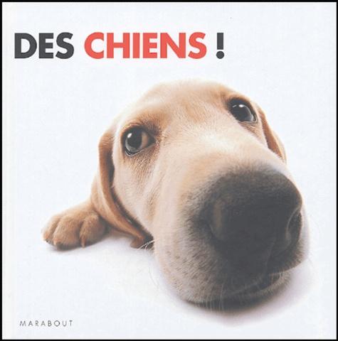 Rod Green - Des chiens !.