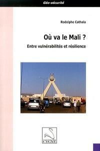 Era-circus.be Où va le Mali ? - Entre vulnérabilités et résilience Image
