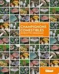 Roland Sabatier et Jean-Luc Fasciotto - Champignons comestibles - 40 recettes originales.