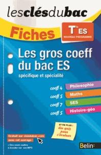 Romain Couderc et Katia Odiot - Les gros coeff du bac ES - Spécifique et spécialité.