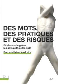 Rommel Mendès-Leite - Des mots, des pratiques et des risques - Etudes sur le genre, les sexualités et le sida.