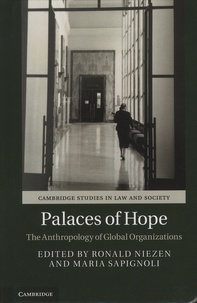 Ronald Niezen et Maria Sapignoli - Palaces of Hope - The Anthropology of Global Organizations.