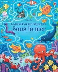 Rosamond Smith - Sous la mer - le grand livre des labyrinthes.