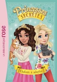 Accentsonline.fr Princesses secrètes Tome 7 Image