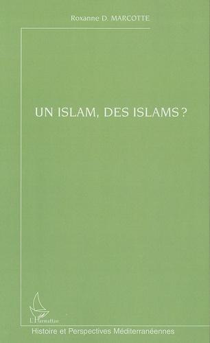 Roxanne D. Marcotte - Un islam, des islams ?.