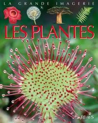 Deedr.fr Les plantes Image