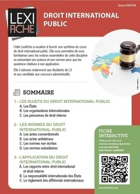 Saman Safatian - Droit international public.