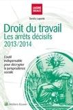 Sandra Laporte - Droit du travail - Les arrêts décisifs 2013-2014.