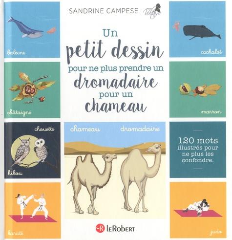 Un petit dessin pour ne plus prendre un dromadaire pour un chameau. 120 mots illustrés pour ne plus les confondre
