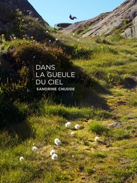 Sandrine Cnudde - Dans la gueule du ciel.