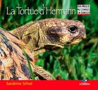Sandrine Silhol - La Tortue d'Hermann.