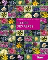 Sandrine Stefaniak - Fleurs des Alpes.
