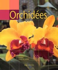 Coachingcorona.ch Orchidées Image