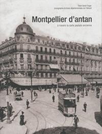 Sarah Finger - Montpellier d'antan - A travers la carte postale ancienne.
