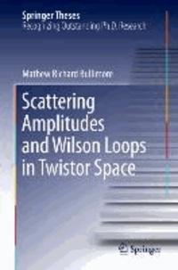 Scattering Amplitudes and Wilson Loops in Twistor Space.
