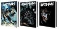 Scott Snyder et Greg Capullo - Batman Tomes 1 à 3 : La cour des hiboux ; La nuit des hiboux ; Le deuil de la famille.