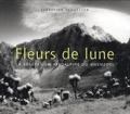 Sebastian Schutyser - Fleurs de lune - La végétation afroalpine du Rwenzori.