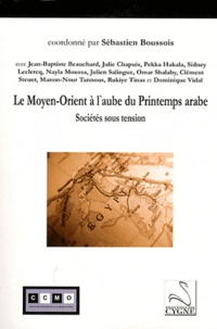 Sébastien Boussois - Le Moyen-Orient à l'aube du Printemps arabe - Sociétés sous tension.