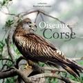 Sébastien Cart - Oiseaux de Corse.