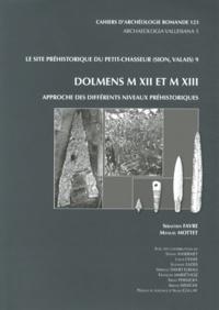 Sébastien Favre et Manuel Mottet - Le site préhistorique du Petit-Chasseur (Sion, Valais) - Tome 9, Dolmens M XII et M XIII : approche des différents niveaux préhistoriques.