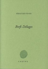 Sébastien Fevry - Brefs déluges.
