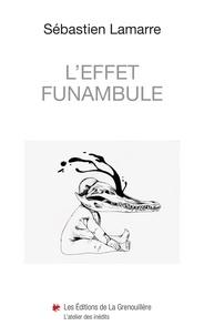 Sébastien Lamarre - L'effet funambule.