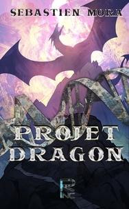 Sébastien Mora - Projet Dragon.
